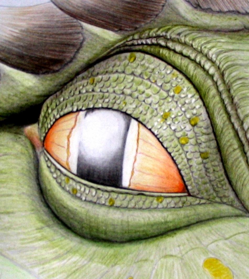 Drachenauge 4 (2007) Zeichnung KVN 349