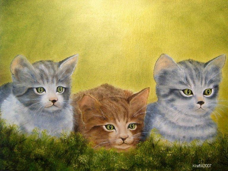 Drei Kaetzchen