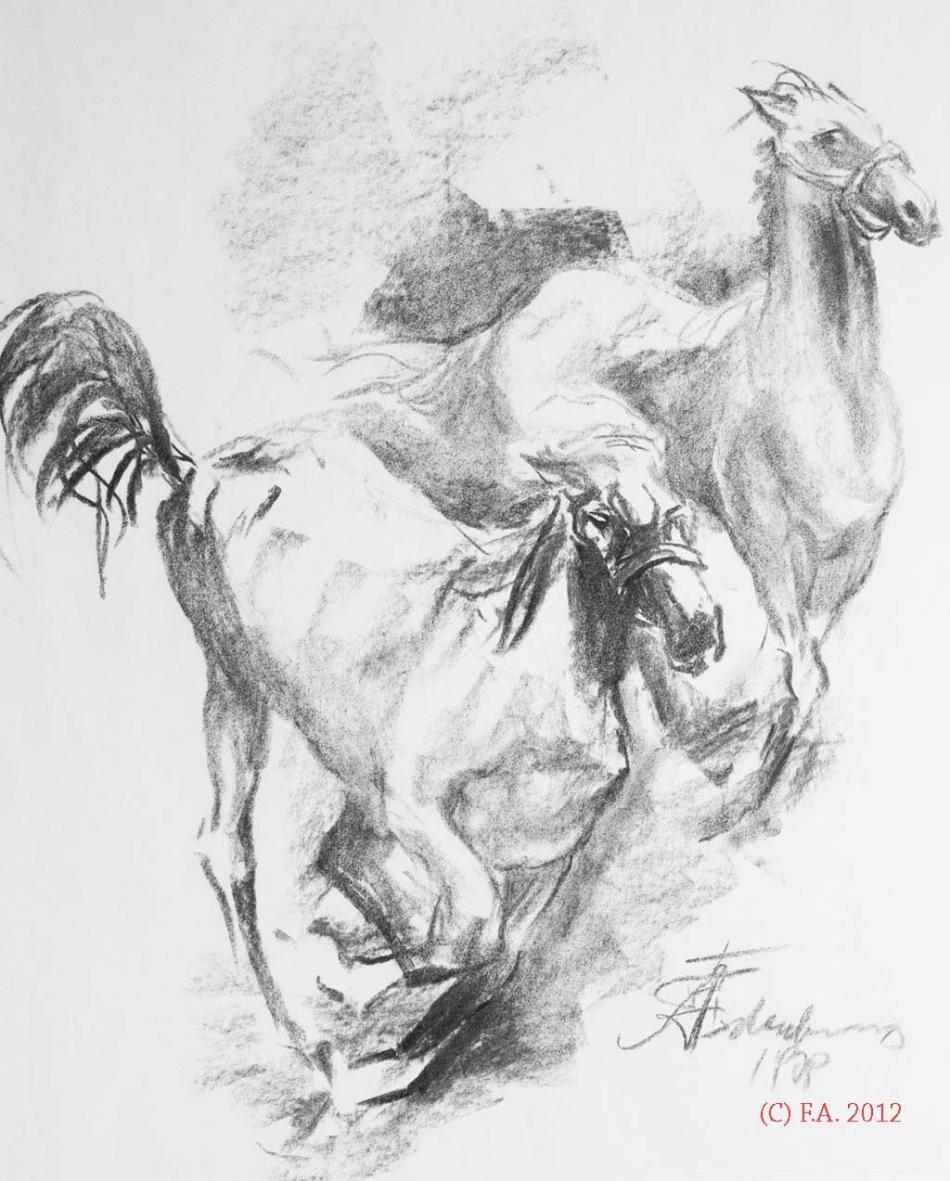 Pferde im Sturm