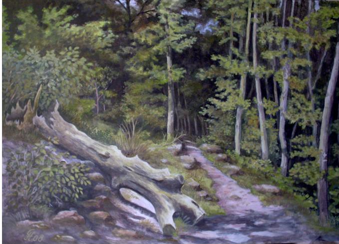 Wanderweg im Pfälzer Wald
