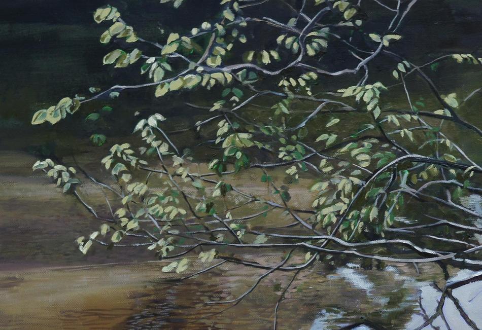 Tenno lake Detail 8