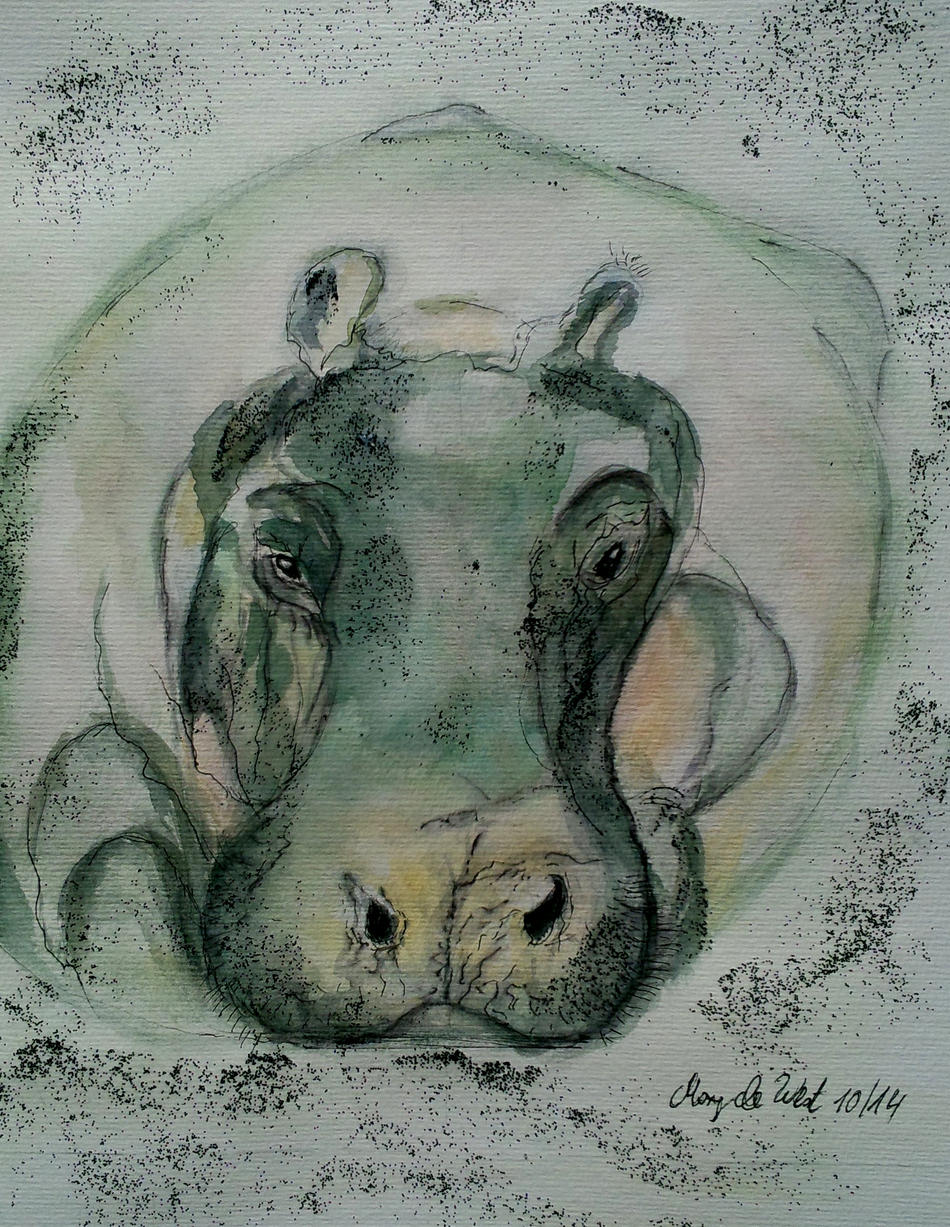 Hippo (Motiv:Meyer-Garsters)
