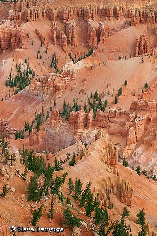 Jericho Ridge (Cedar Breaks, USA)