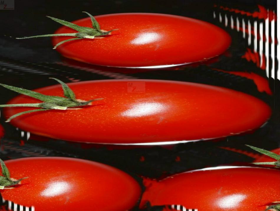Flying Tomatos