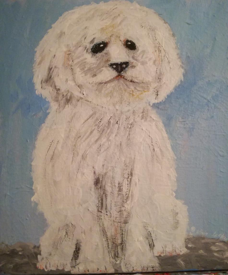 Einstein Hund