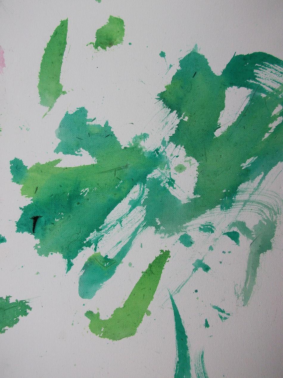 Bild der Eselin Levina grün2