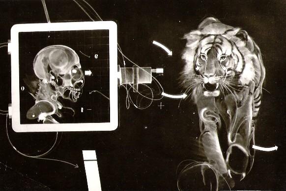 TIGER Malerei EHRE 1975
