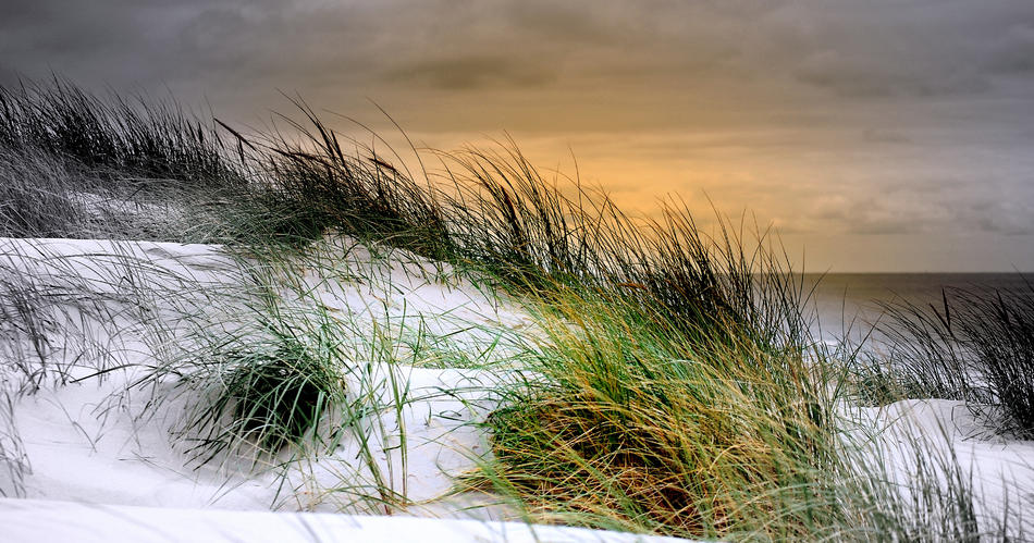 Kalt berührt der Wind das Meer