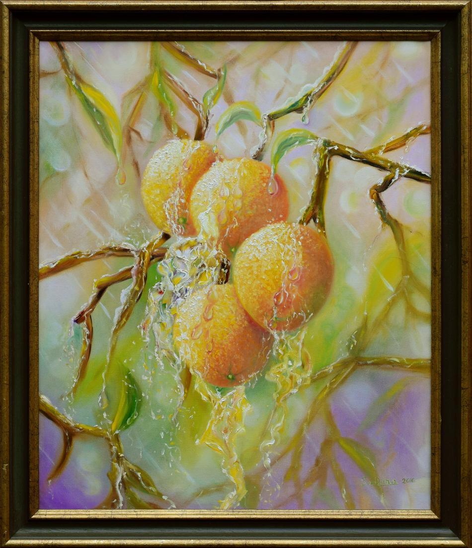 Oranges in the rain