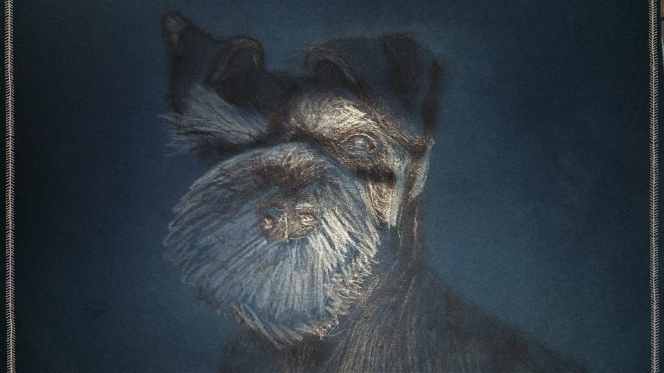 Le chien