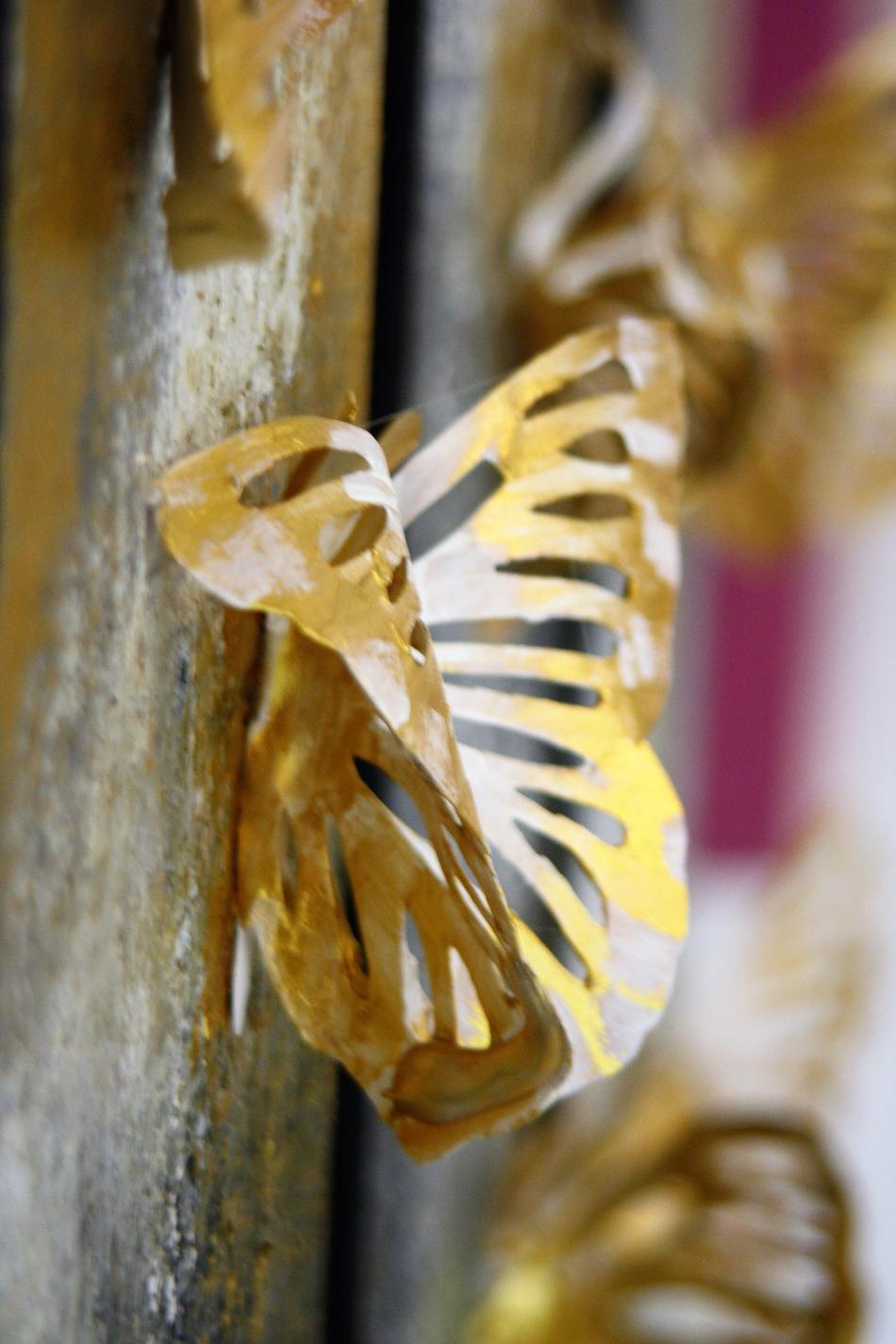 Butterfly (Nahaufnahme)