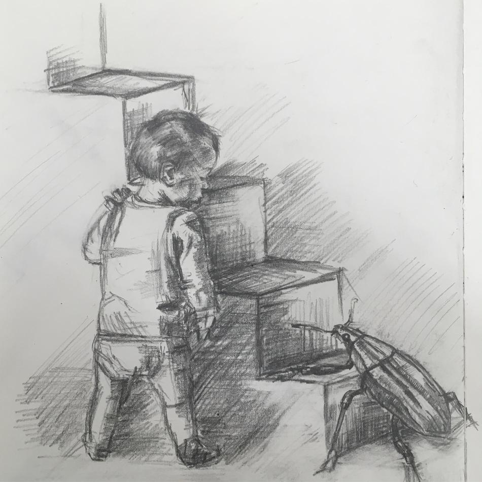 the boy who was greeted by a beetle