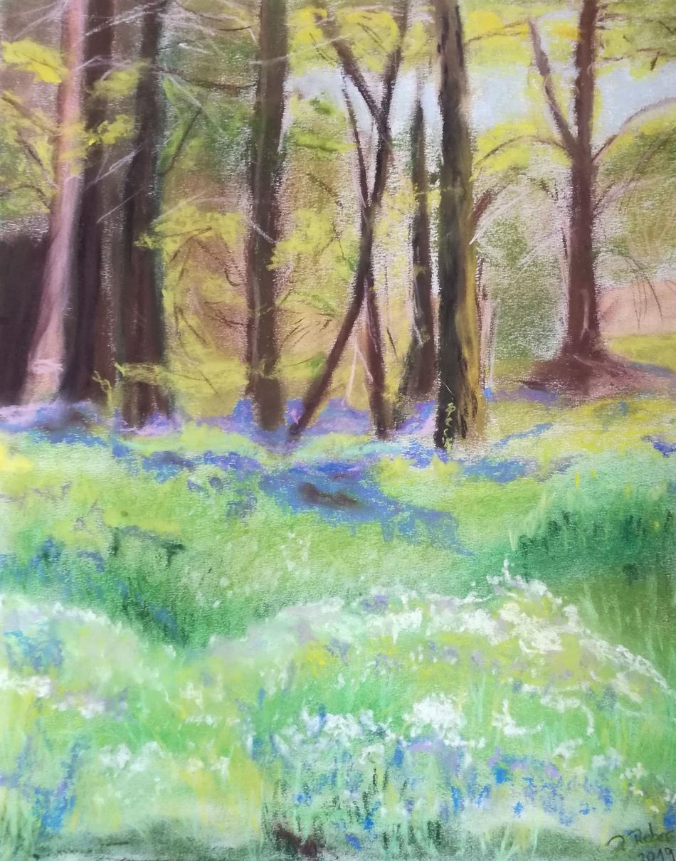 Frühlingswald