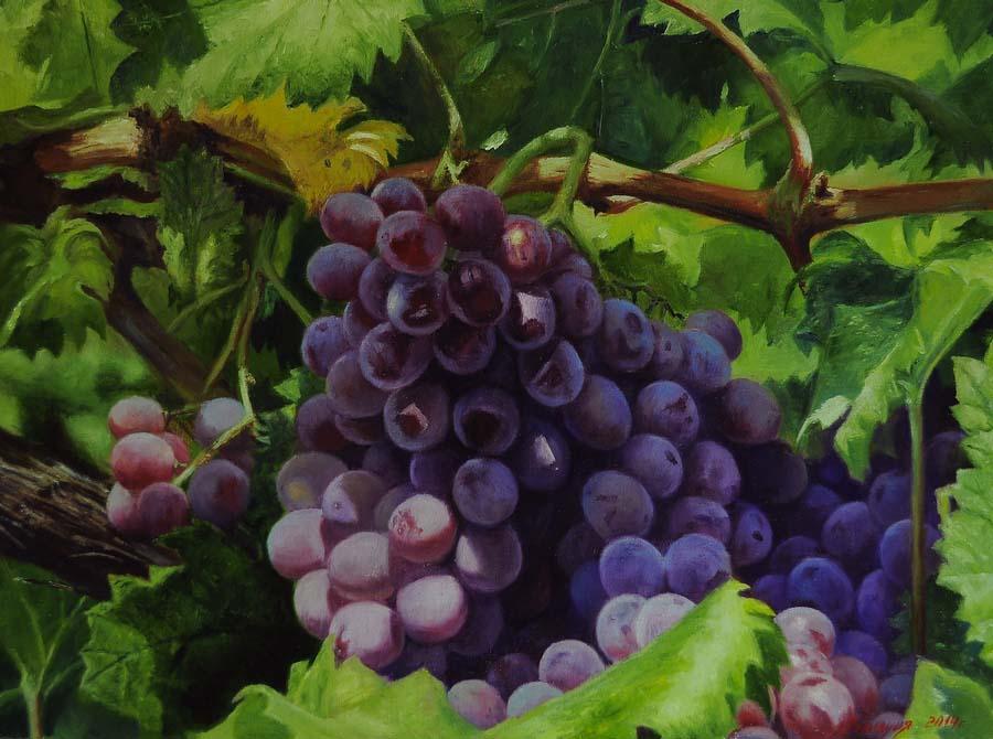 Виноград.Богатый урожай.