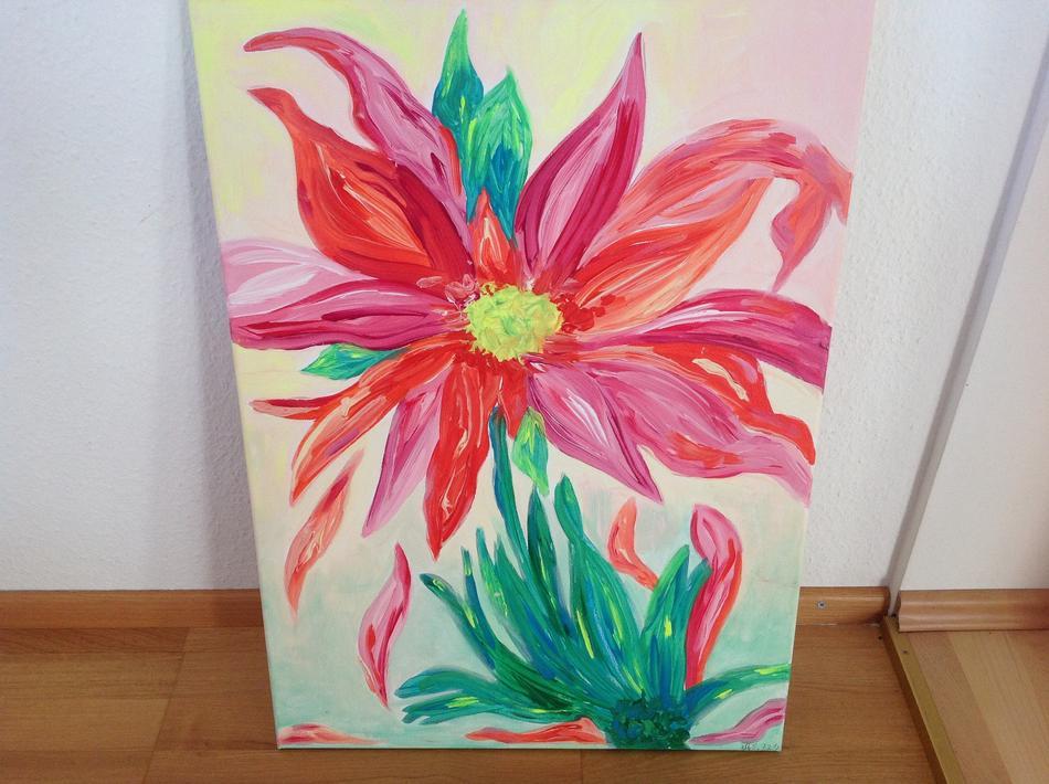 Blütenwechsel
