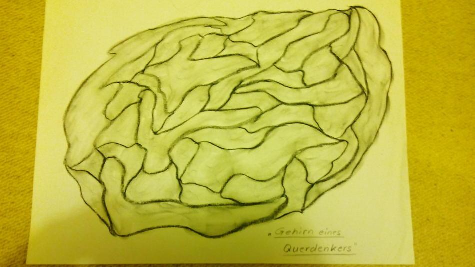 Gehirn eines Querdenkers