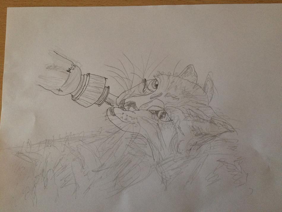 Katze trinkt Flaschenmilch - Cat drinking milk