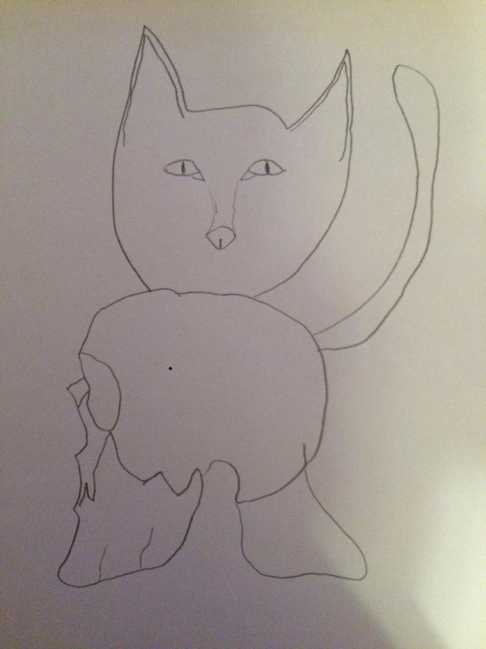 Katze und Schädel