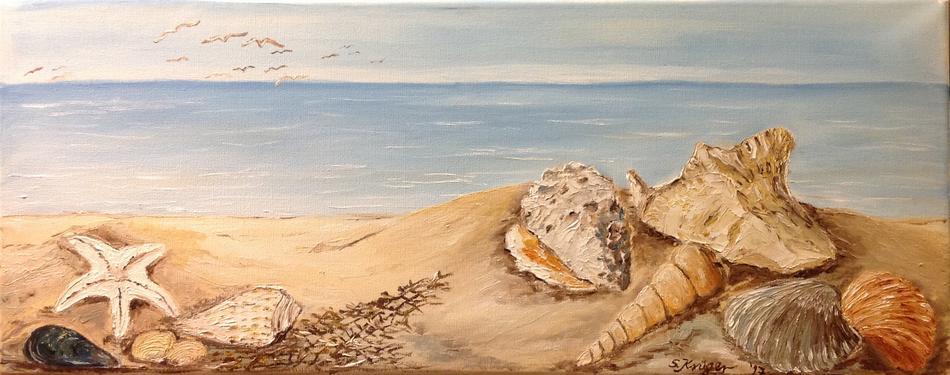 Souvenir der Meere