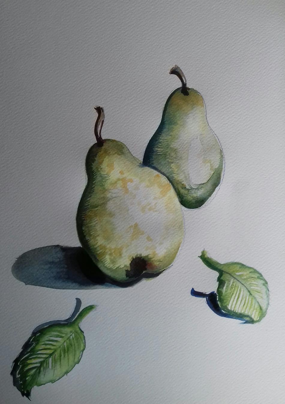Birnen aus dem Alten Land
