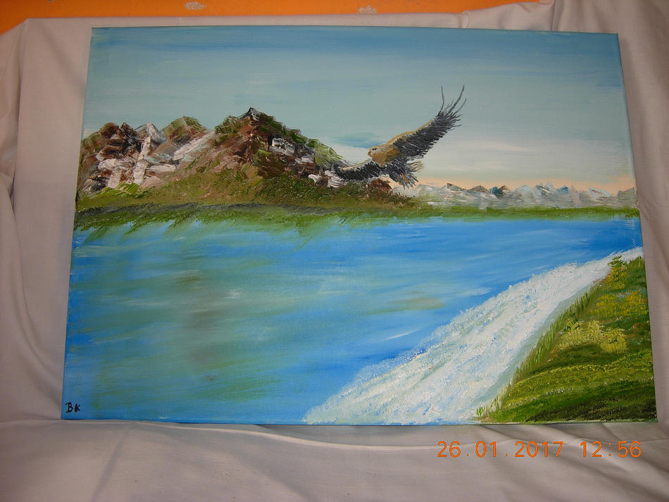 Adler am Meer