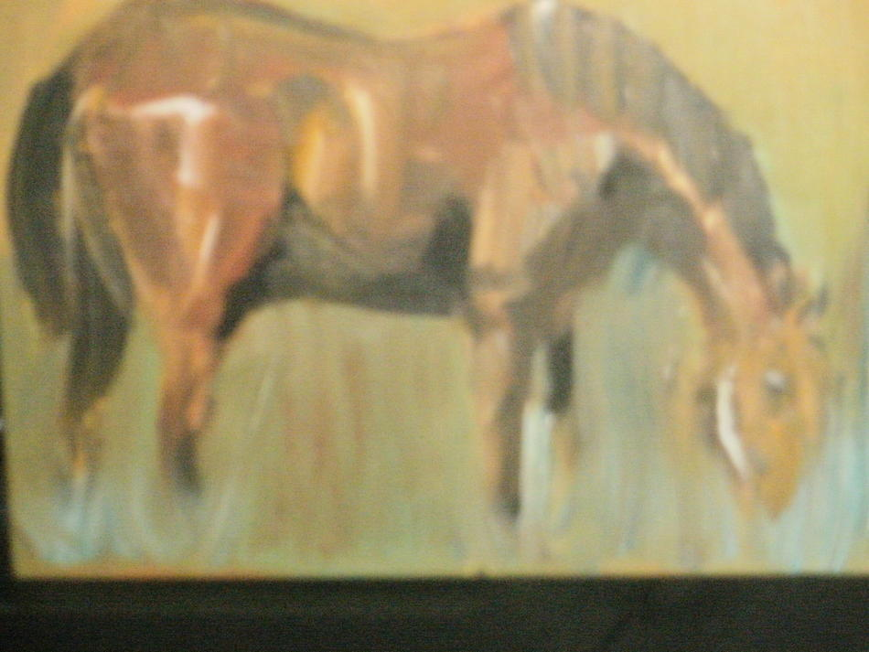 Pferd Ölbild