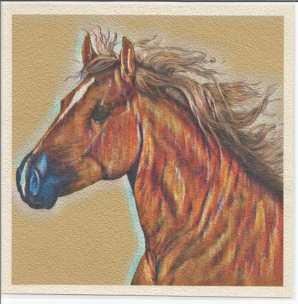 Porträt Pferd
