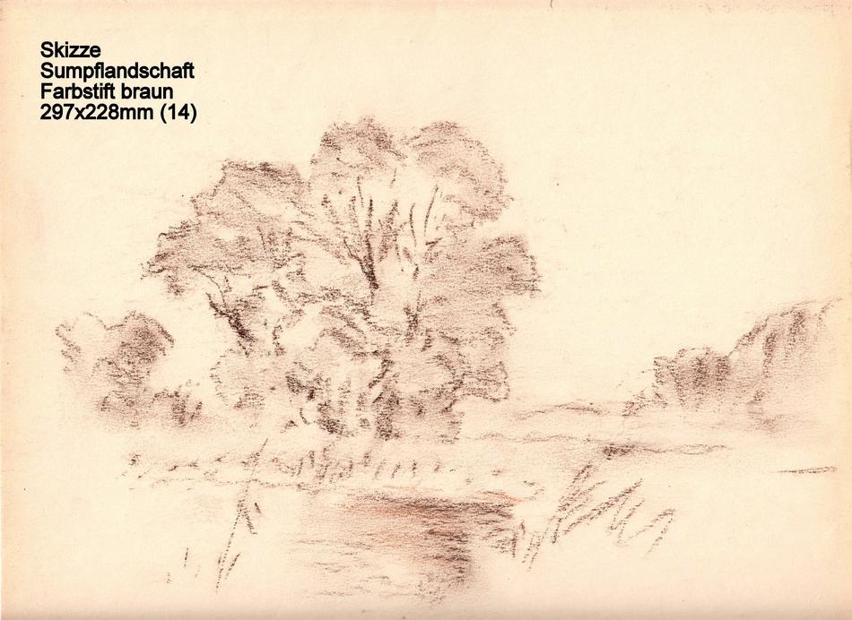 Skizze Sumpflandschaft Farbstift braun 297x228mm (14)
