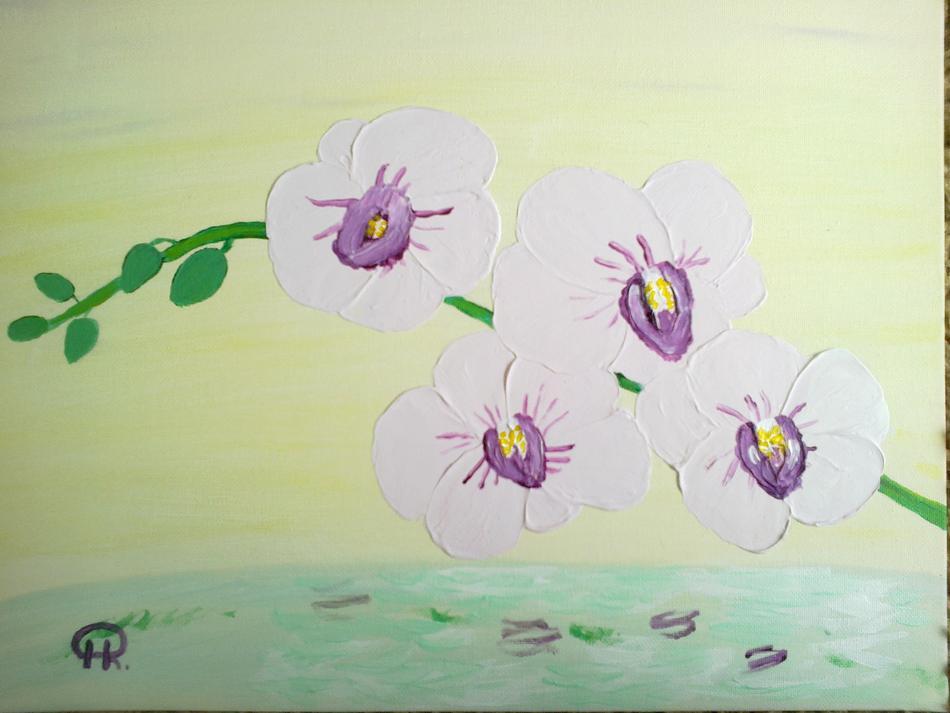 Orchidee über dem Wasser