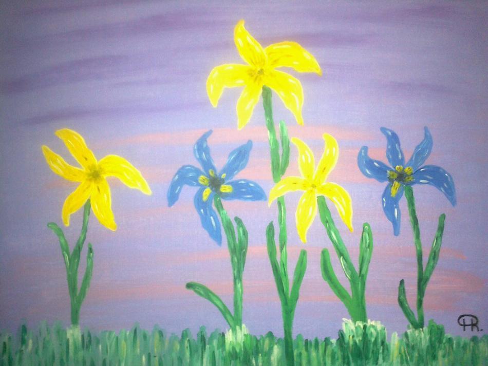 Gelbe und blaue Iris