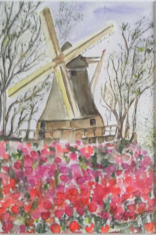 Holland Tulpenblüte