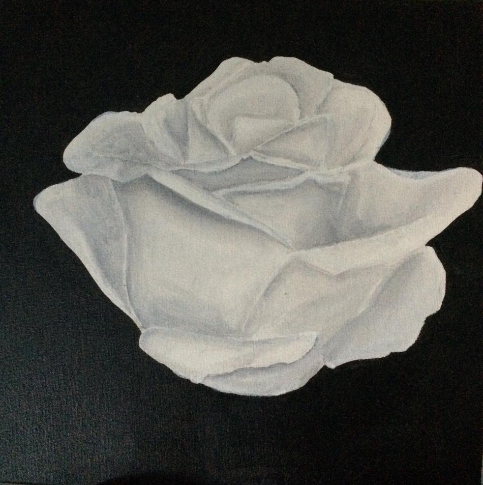 Little white Rose