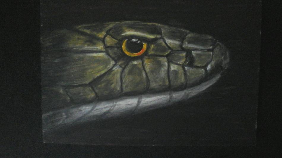 Schlangenglanz
