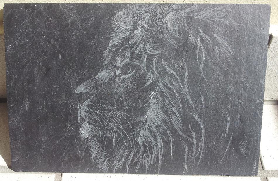 Löwe auf Schieferplatte
