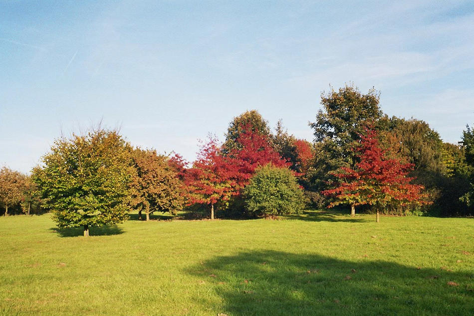 Der Ruhrpott im Herbst