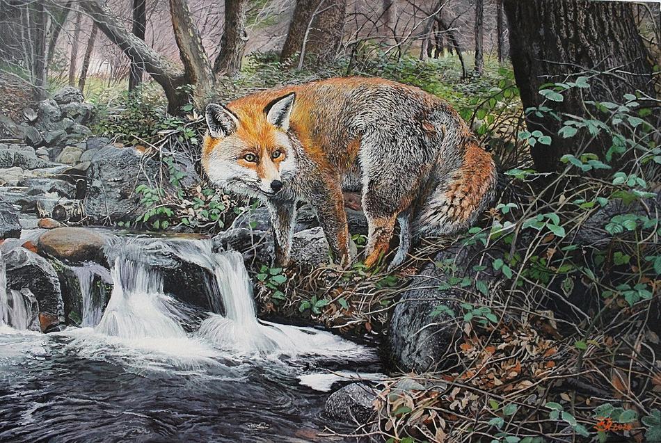 Fuchs am Wasserfallklein.jpg