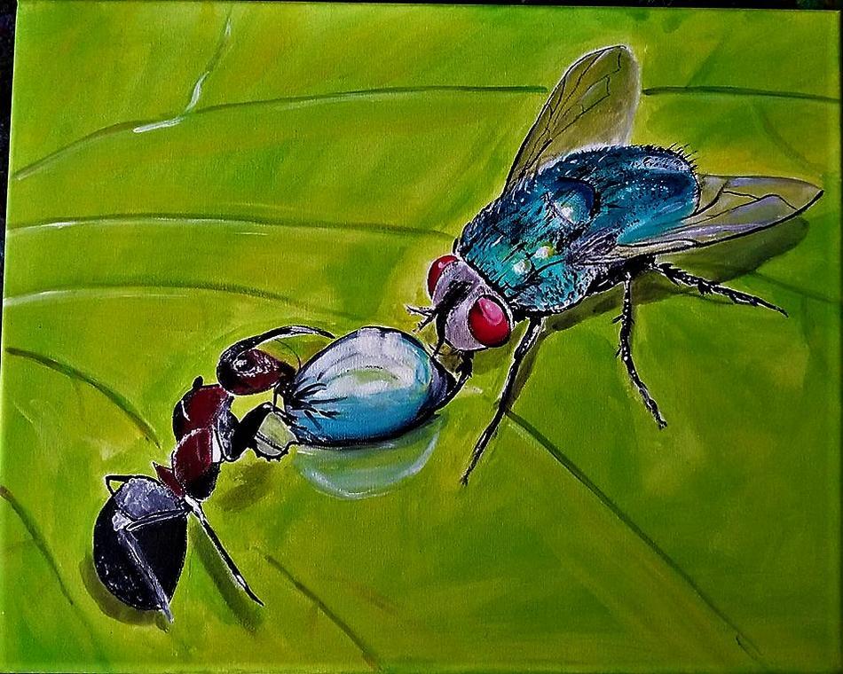 Denkt  auch an die Insekten