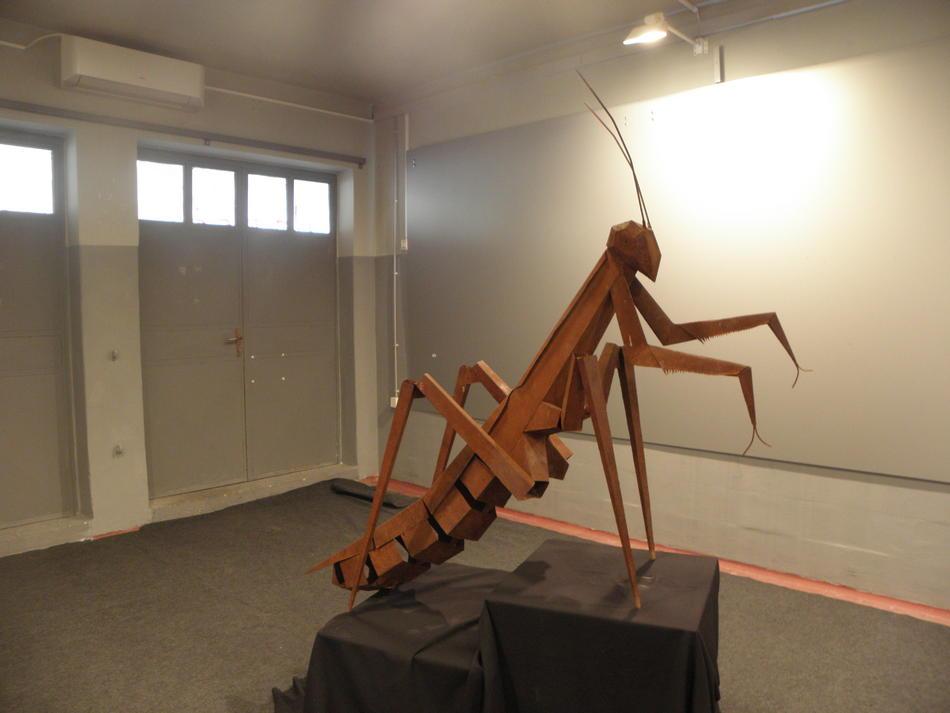 Bogomoljka/praying mantis