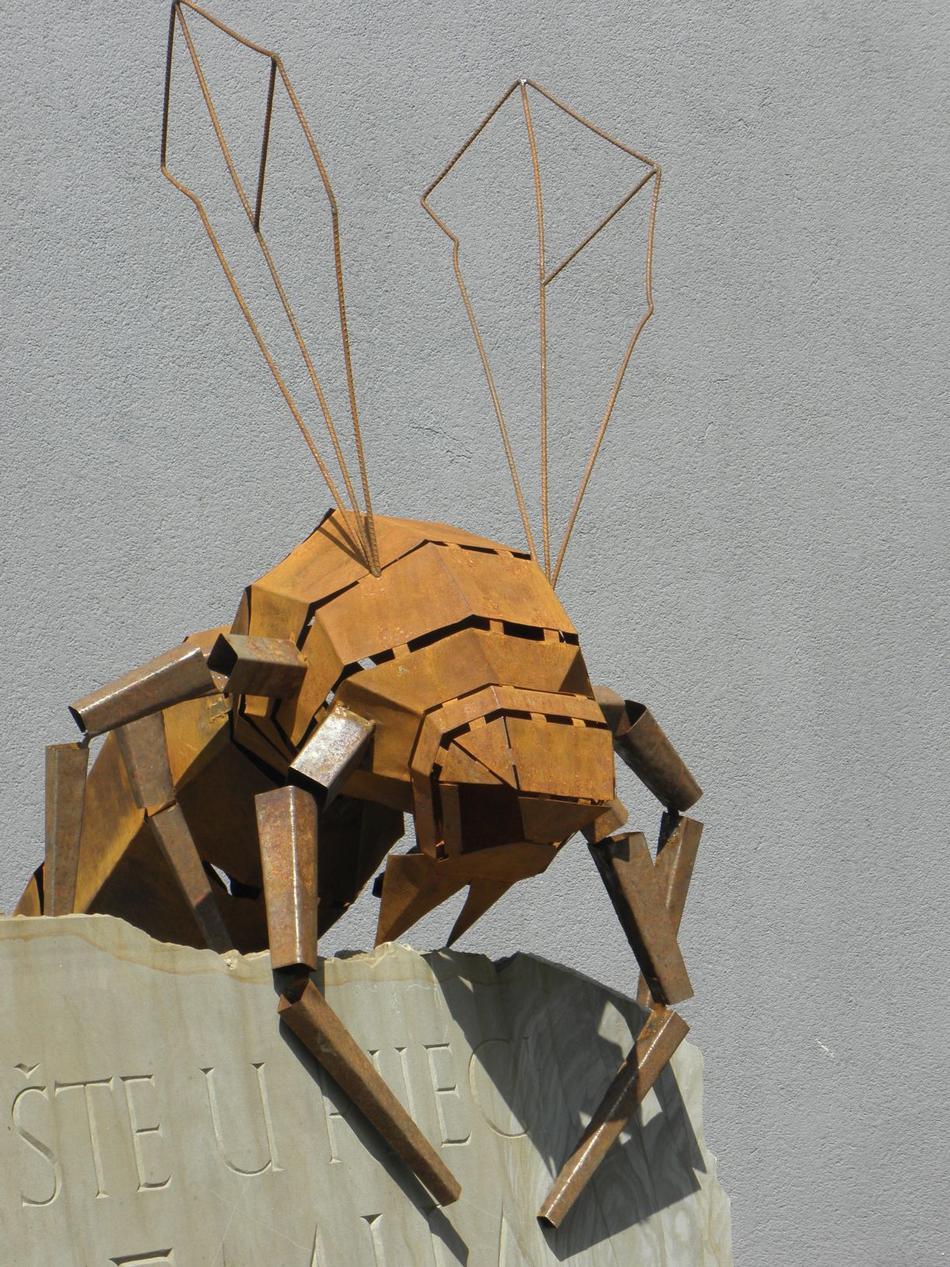 Strsljen/Hornet