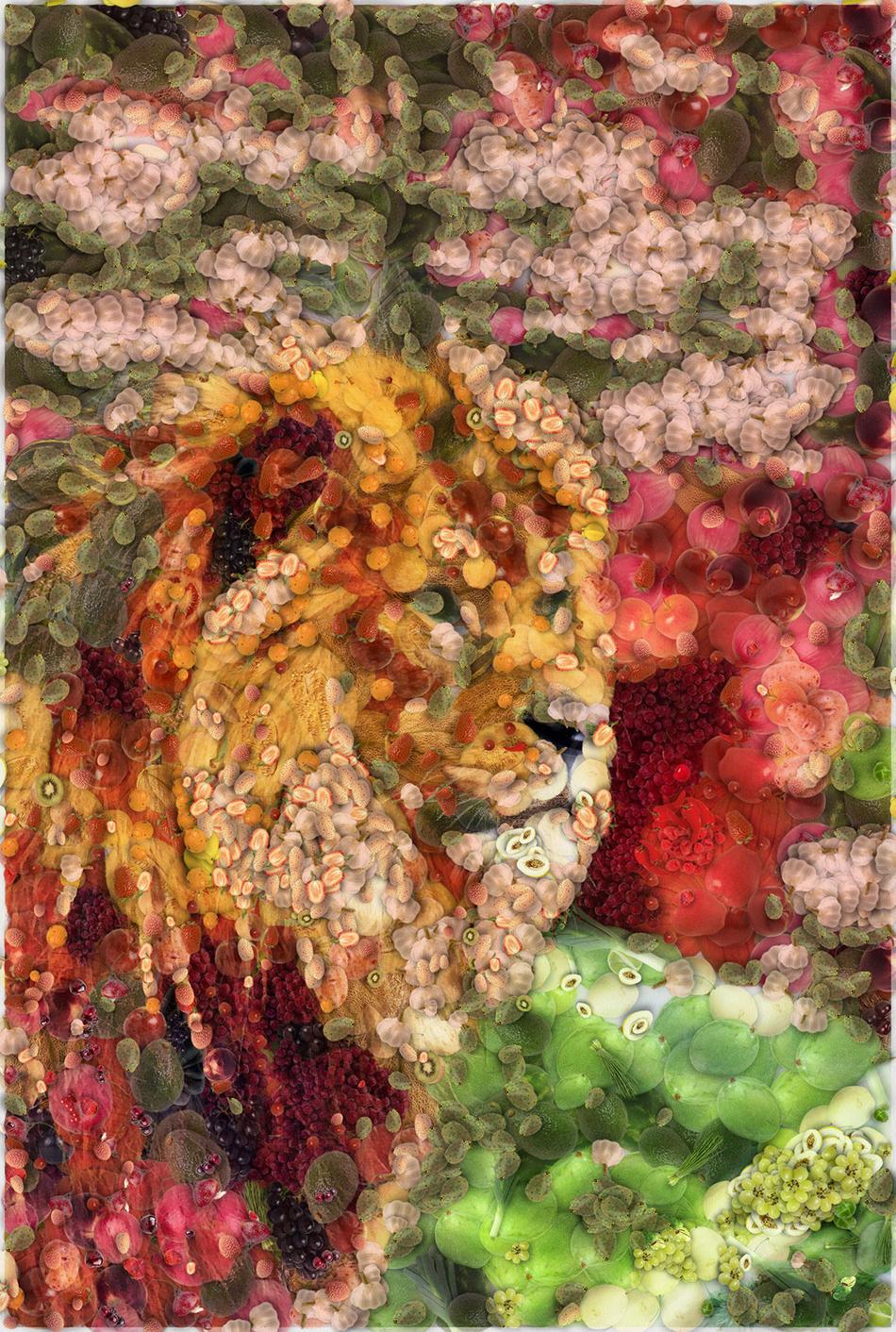 lion__Vegetables