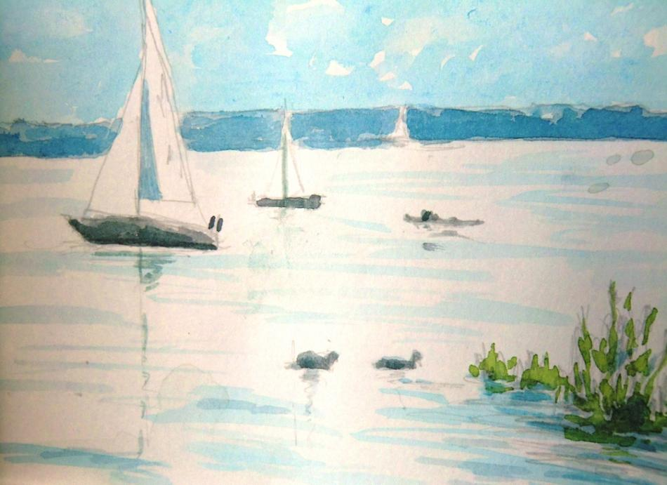 am Bodensee, Schiffe
