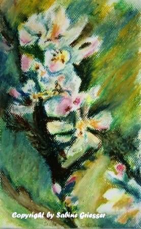 Apfelblütenzweig