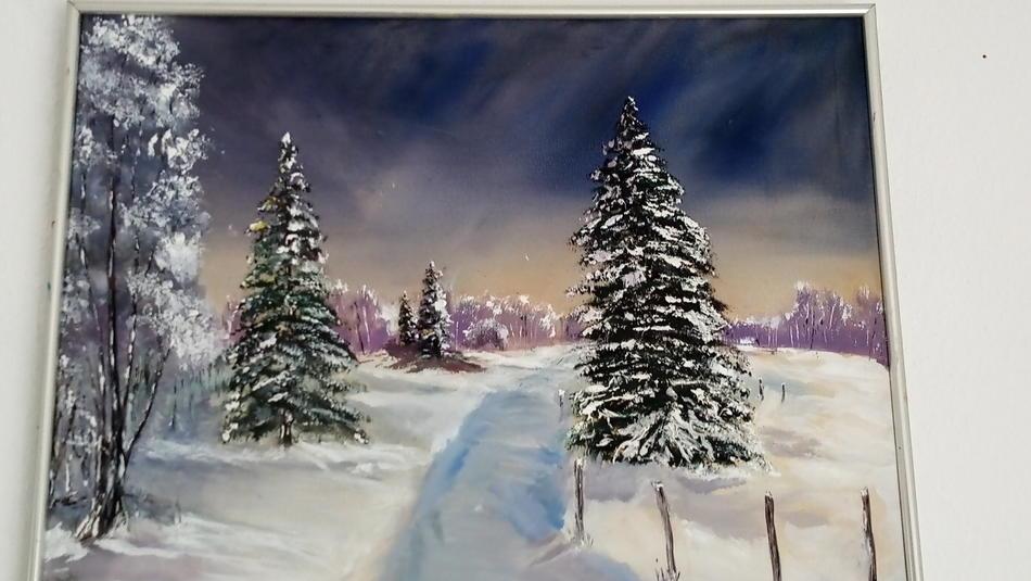Anmut des Winters