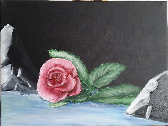 Rose am Wasser