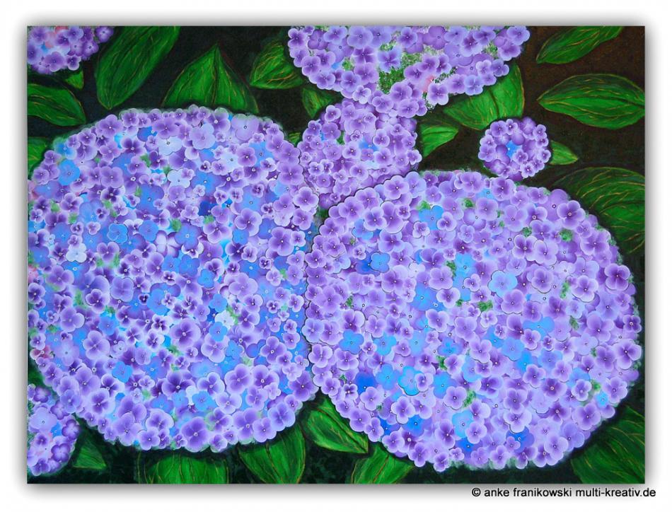 Acrylbild, xxl-Hortensie, 120x90cm
