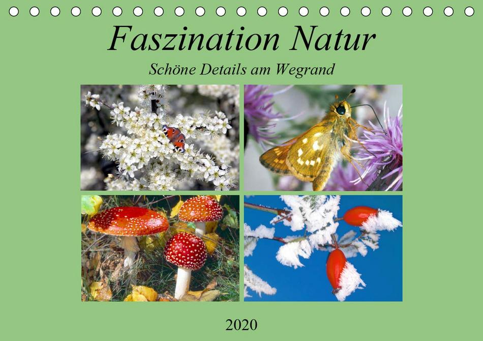 Faszination Natur