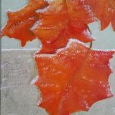Frostige Blätter