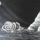 Rose-schwarz/weiß