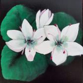 Blumenblüten