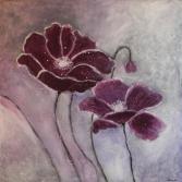 Lila Mohnblüten